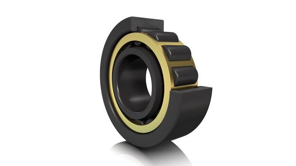 FAG 원통 롤러 베어링(cylindrical roller bearing)